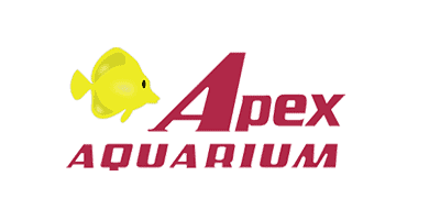 apex400x200